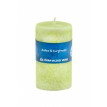 Candle S Aloe & Cucumber Juice
